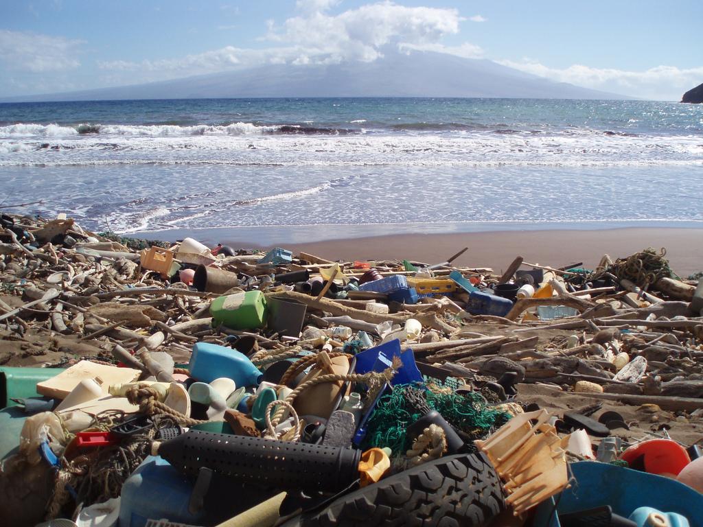 Bye Bye Plastic Bags Melati and Isabel Wijsen