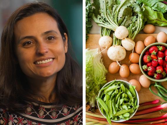 Tatiana Garcia Granados The Common Market
