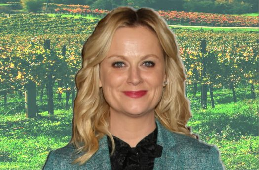 Amy Poehler's directorial debut, Wine Country, drops this weekend on Netflix.